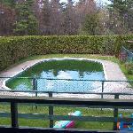 Vue sur la piscine : au début du printemps