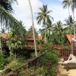 Sun deck of the Coconut Paradise P2