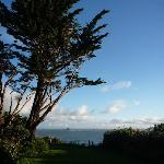 View of end of garden looking out to sea