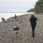 daughters and nieces exploring the rocky beach.
