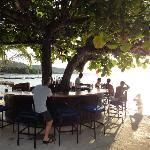 The tree bar (1 of 2!) on the beach