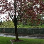Best Western River's Edge Tukwila