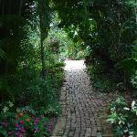 Brick pathway between gardens