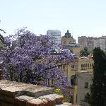 Blick vom Alcazaba auf Málaga und blühende Yakaranda Bäume