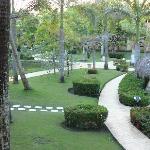 aménagement paysager mature