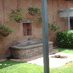 Museo garden 3