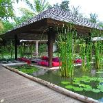 Restaurant In Lotus Pond