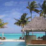 ininity pool in paradise