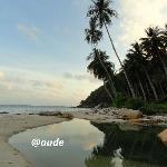Envie de plage tropicale et sauvage ?