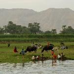 Hektisches Leben am schmalen Nilufer