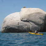 Abel Tasman Kayaks - Day Tours