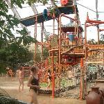 l'arbre à eau pour les enfants