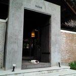 モダンな建物とマスコット犬