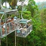 Veragua Rainforest (Gondola)
