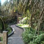 the route to the garden bar