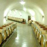 Wine, Wine everywhere....