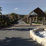 l'avenue principale du camping