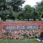 Ashburton Domain