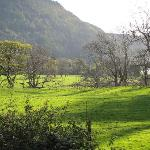 Near Salmon Leap B&B - Killarney (Muckross)