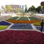 Habima square - the garden