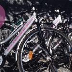 Gratis Bikes