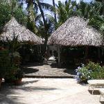 A part of the inner garden