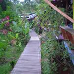 cabins beach walkway