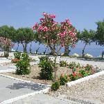 jardin dévant les bungalows,plage