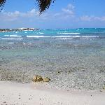This is a picture of the beach