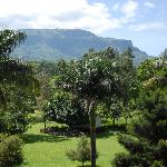 Mt.Wanale view
