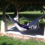 me on the hammock
