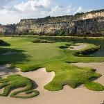 The Green Monkey golf course