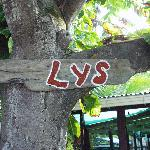 Their sign