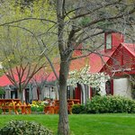 Gibbston Valley Winery in Spring
