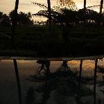 Morgenstimmung am Pool