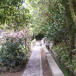 Quinta da Mo Foto