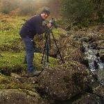 Paul Bettison Photography