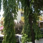 Mapusa Residency