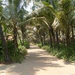Yab Yum @ Jivana Plantation