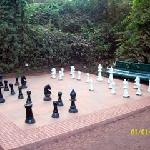 Chess for recreation