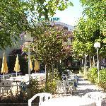 Villa  Eden immersa nel suo verde e fiorito giardino(magnifico!)