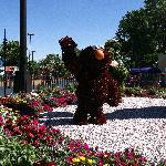 Elmo greats you at the park entrance! Lots of flowers in the park - many of which smelled quite