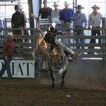 Tejas Rodeo Company