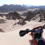 Desert Tours 365 days per year