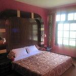 Zdjęcie Hotel Devidyar