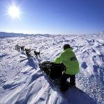 Muktuk Adventures - Dog Sledding
