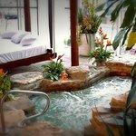 Jardin intérieur exotique, incluant un spa nordique
