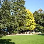Rund ums Museum verläuft der Stadtgarten