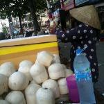 coconut's life