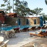 'activity' pool